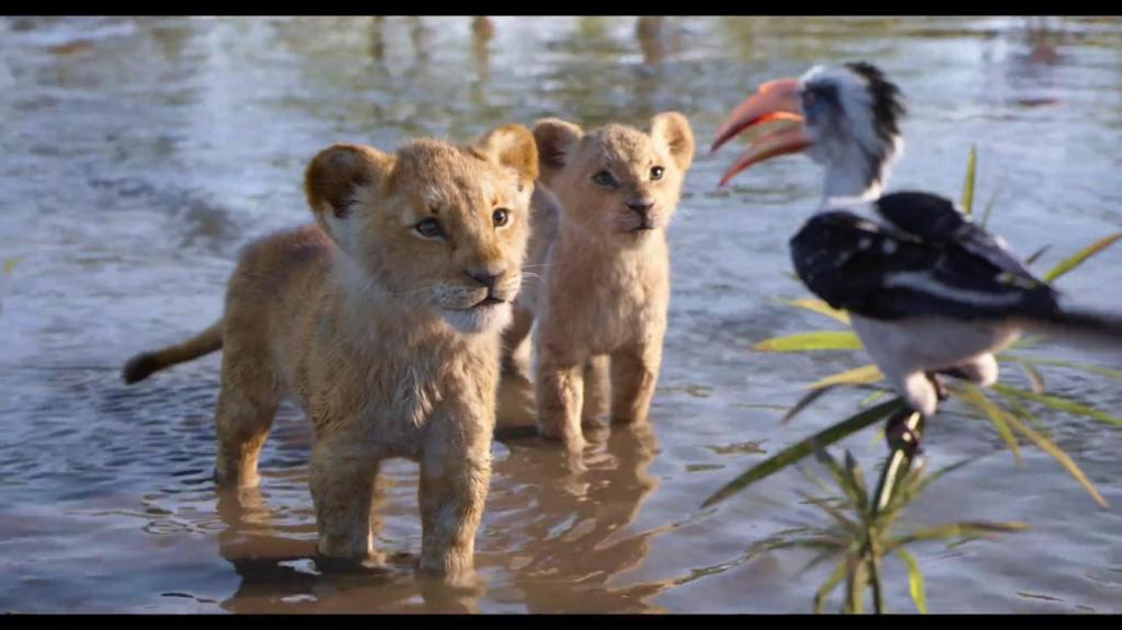 Still frame shot Zazu, young Simba and young Nala from The Lion King (2019)